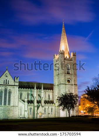 St. Patricks cathedral in Dublin at night - stock photo