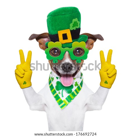 st patricks day dog with peace fingers - stock photo