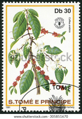 ST. THOMAS AND PRINCE ISLANDS - CIRCA 1981: A stamp printed in St.Thomas and Prince Islands shows  Coffea arabica, series World Food Day, circa 1981 - stock photo