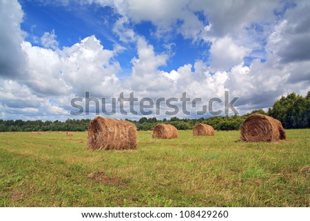 stack hay on summer field - stock photo