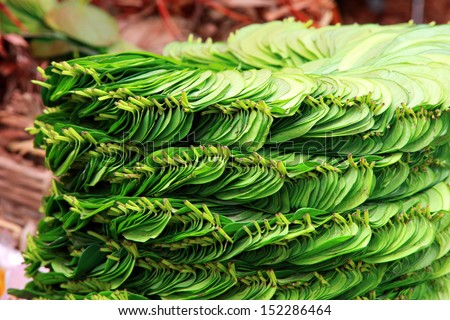 Stack of betel leaf in Madiwala market ,Bangalore.The betel leaf is cultivated in most of South and Southeast Asia.  - stock photo