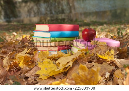 stack of books in the autumn park - stock photo