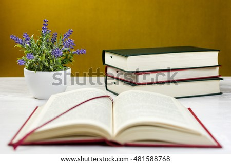 Stack of books on the table and a lavender plant