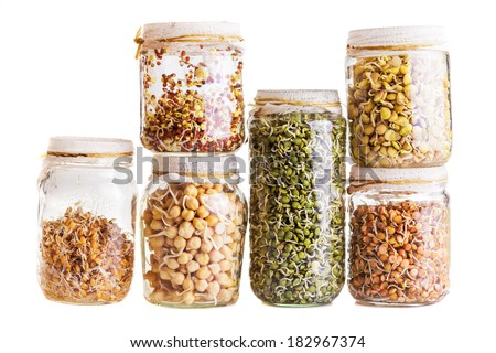 Stack of Different Sprouting Seeds Growing in a Glass Jar Isolated on White Background - stock photo