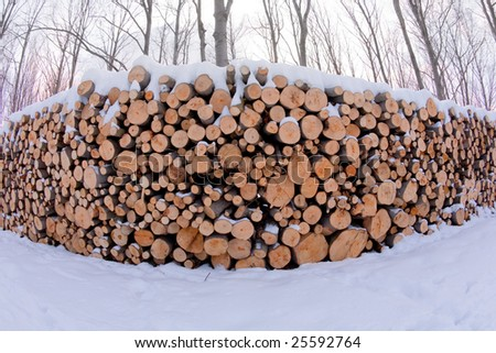 Stack of firewood covered by snow - stock photo
