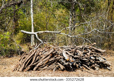 stack of firewood stacked for drying in the woodpile on the green meadow