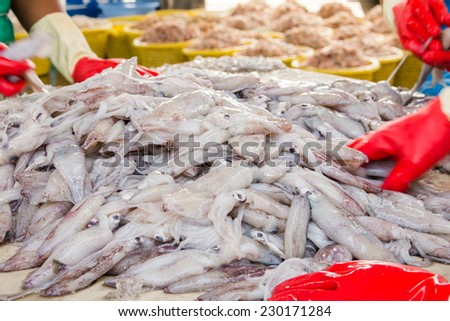 stack of fresh squid in basket sold in fish dock market - stock photo