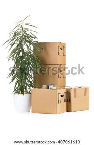 Stack of moving carton boxes with plant over white background - stock photo