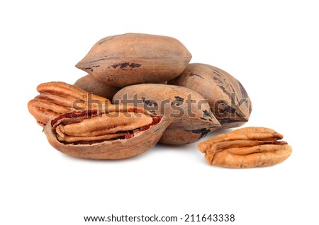 Stack of pecan nuts isolated on a white background