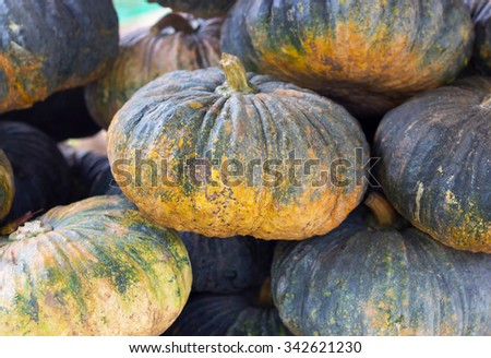 Stack of Pumpkin in the market - stock photo