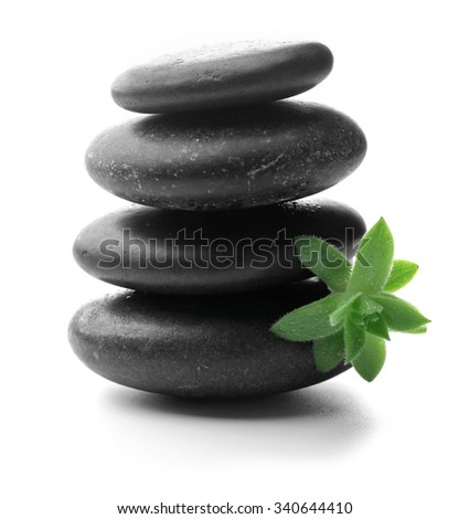 Stack of stones and a green flower, isolated on white. Spa relaxation concept