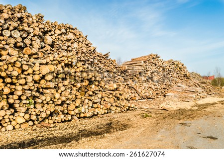 Stack of timber against blue sky. Dirt road with tracks in foreground. Sunny weather with some clouds. - stock photo