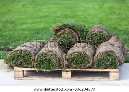 Stack of turf grass rolls for a lawn - stock photo
