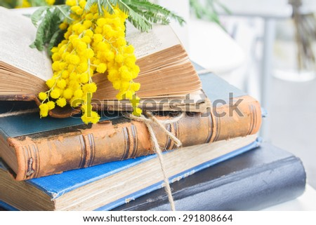 stack of vintage old books  with fresh mimosa flowers close up  - stock photo