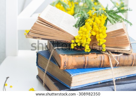 stack of vintage old books  with open one and mimosa flowers  - stock photo