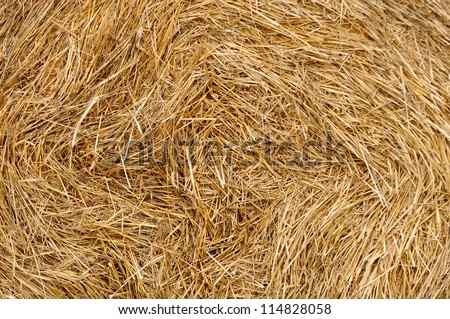 Stack of Wheat Straw - stock photo