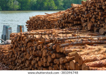 Stack of wood prepared for making charcoal - stock photo