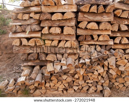 Stacked firewood in waiting for the winter - stock photo