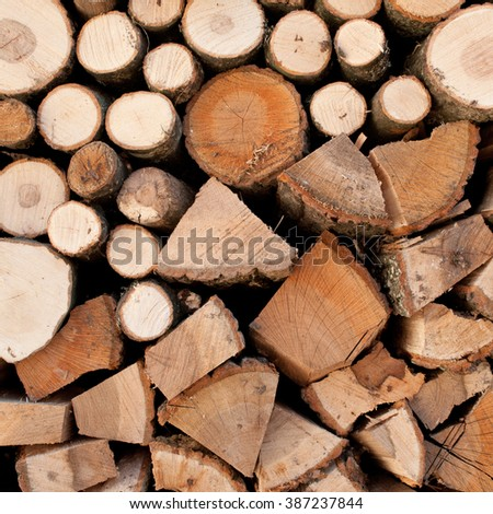 Stacked logs of oak tree for making a fire - stock photo