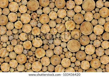 Stacked Logs Texture, Natural Background - stock photo