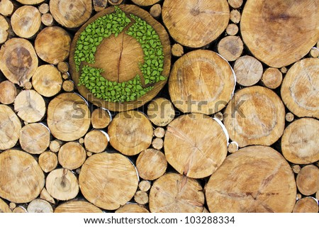 Stacked Logs with recycle symbol, concept - stock photo