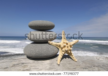 Stacked of stones with Starfish on rotten driftwood at the beach - stock photo
