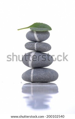 Stacked of striped stones and green leaf