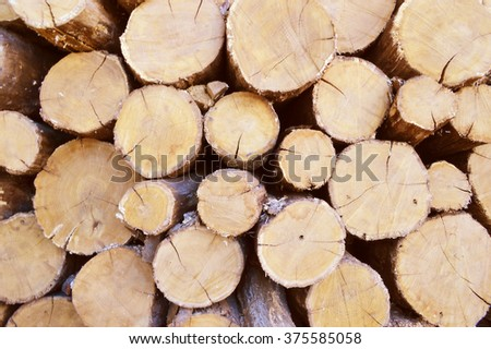 Stacked tree wood logs background - stock photo