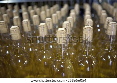 stacked up bottles  in the cellar - stock photo