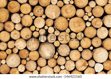 Stacked wood pine timber for construction buildings Background - stock photo