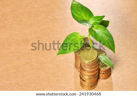 Stacks Of Golden Coins And A Small Plant Sprouting From The Coins with copy space area  - Profitable Saving Concept - stock photo