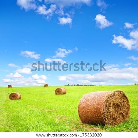 stacks on field - stock photo
