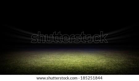 Stadium grass - stock photo
