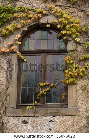 Stained glass window in old house  with Virginia creeper on the wall