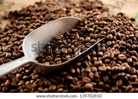 Stainless steel scoop laying in a pile of roasted coffee beans