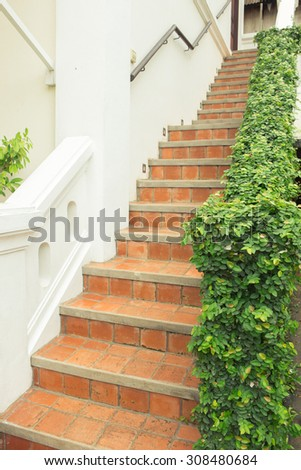 Staircase full of plants - stock photo