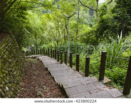 Staircase leading through the forest - stock photo