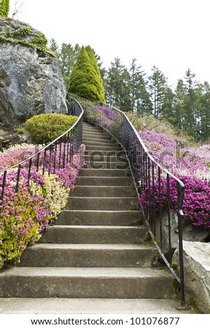 Staircase surrounded by flowers leading into woods