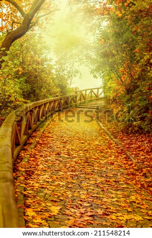 Stairs covered with golden leaves in a park. Autumn in Prague, capital of Czech Republic  - stock photo