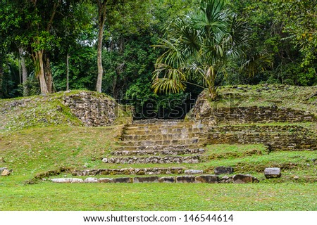 Stairs of the ancient mayan ruins in Belize - stock photo
