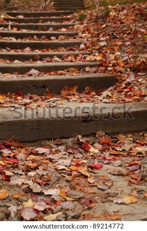 Stairway covered with colorful fallen leaves. Sarah P. Duke Gardens at Duke University in North Carolina. - stock photo