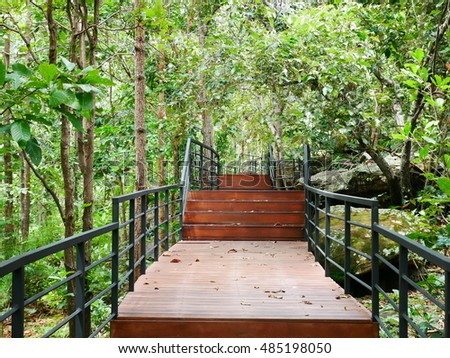 Stairway in a lush and verdant forest at Thailand