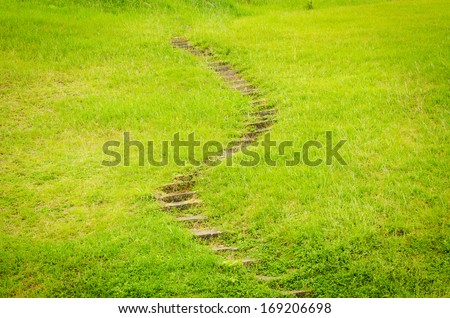stairway on with green grass. - stock photo