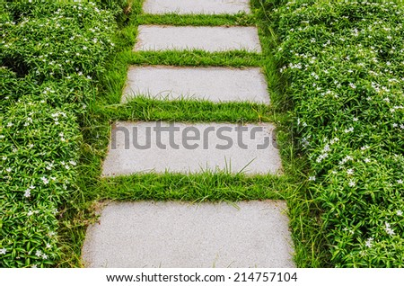 Stairway with green grass - stock photo