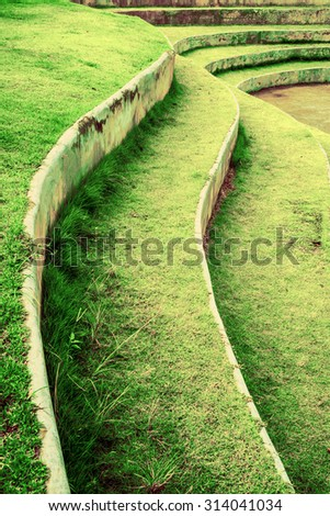 Stairway with green grass,landscape architecture.