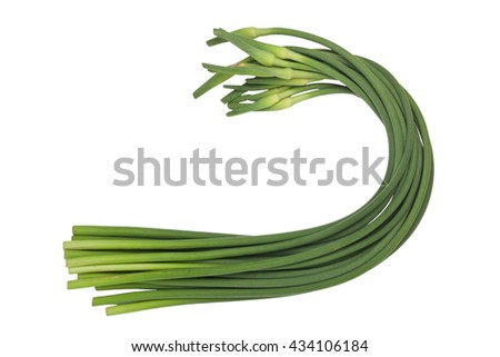 Stalks of garlic scapes isolated on white background