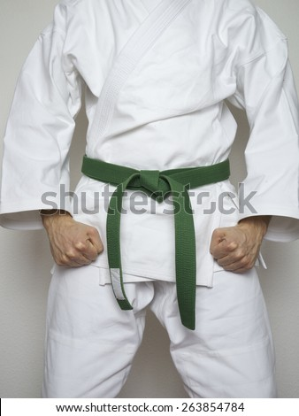 standing fighter with green belt in white suit martial arts - stock photo