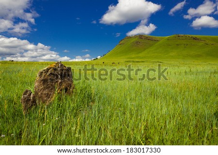 Standing stones. A small stone circle. Prehistoric Standing Stone. - stock photo