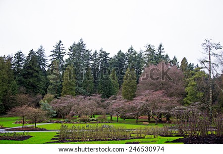 Stanley park in Vancouver, British Colombia. - stock photo