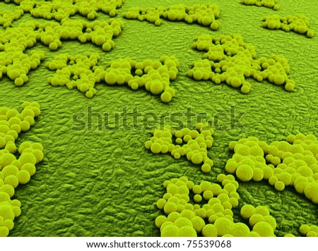 staphylococcus virus infection - stock photo